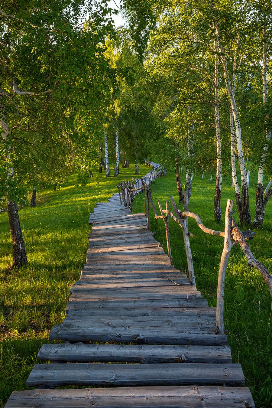 nikolskoe_priroda_34.jpg