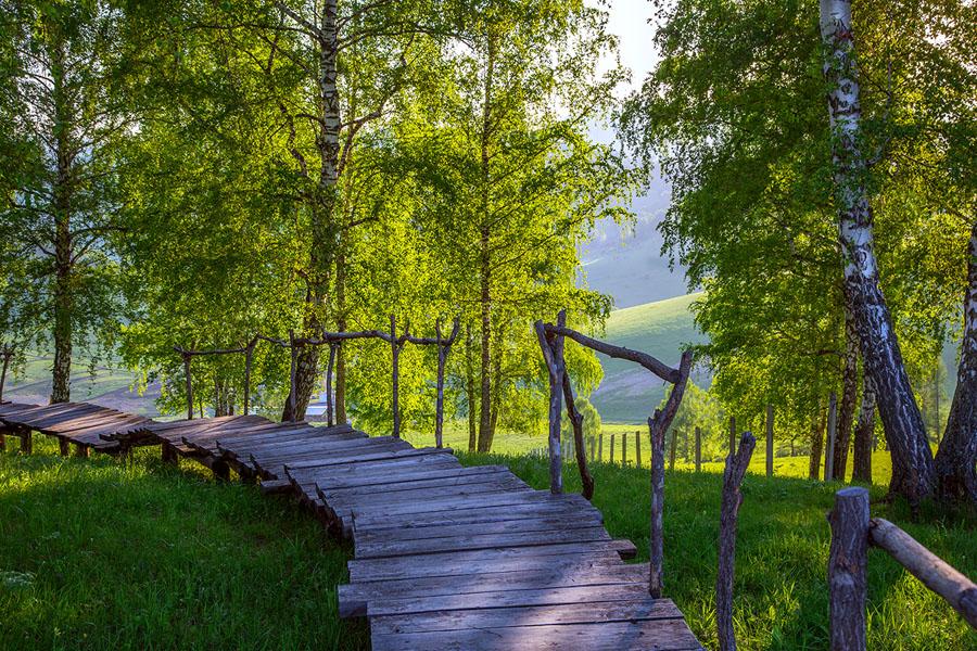 nikolskoe_priroda_37.jpg